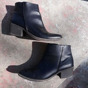 Volatile short black booties ankle boots